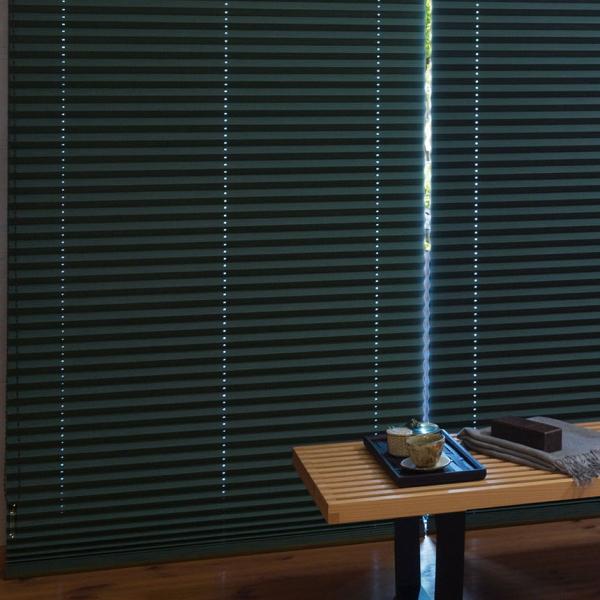 プリーツスクリーン もなみ 25mm ニチベイ カグラ 遮光 M8158~M8163 シングルスタイル(コード式) 幅160.5~200cm×高さ30~60cmまで