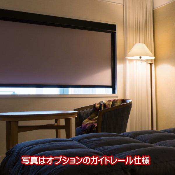ロールスクリーン オーダー ニチベイ ソフィ 防炎 フォルゼBC 遮光1級 N9165~N9169 幅200.5~240cmX高さ201~250cm