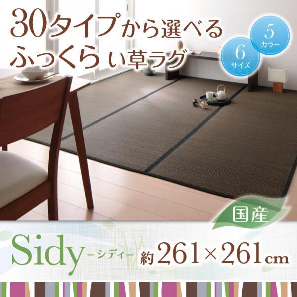 い草 い草ラグ 日本製 モダンい草ラグ カーペット 261×261 涼しいラグ ラグマット 和室 和風 畳 リビング 激安 sale アウトレット価格 デザイン重視 送料無料 おしゃれ かわいい