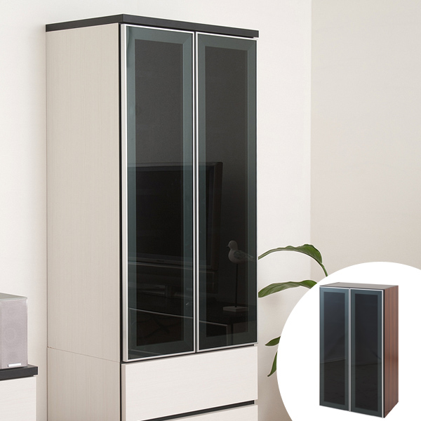 Perfect Wall Cabinet With Glass Doors Design