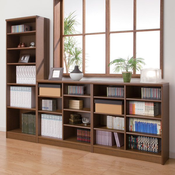 ... It Is For Moving Shelf 30cm For Exclusive Use Of The Ace Rack Color  Rack ...