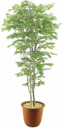 人工観葉植物 ピュアメイト ぶなの木 180cm 送料無料( 光触媒 消臭 インテリア 大型 )