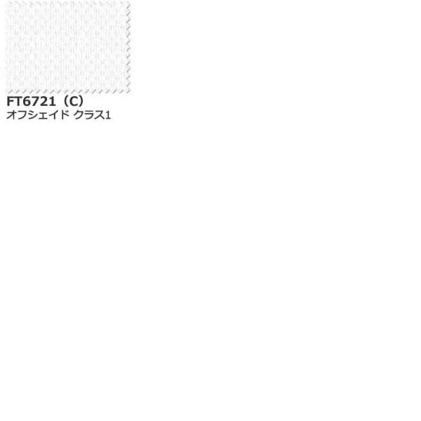 カーテン シェード 川島織物セルコン MIRROR LACE FT6721 スタンダード縫製 約2倍ヒダ