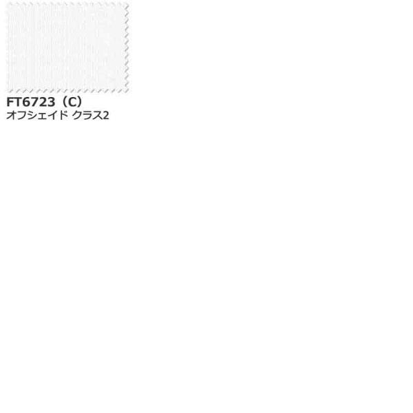 経典ブランド カーテン 約1.5倍ヒダ スタンダード縫製 シェード 川島織物セルコン MIRROR FT6723 LACE FT6723 スタンダード縫製 約1.5倍ヒダ, 工作素材の専門店!FRP素材屋さん:01c4d2d0 --- kanvasma.com