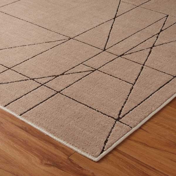 ラグ・カーペット・絨毯・マット 防ダニラグだから安心・快適なアスワンラグ レジェール BE(ベージュ)185X185cm