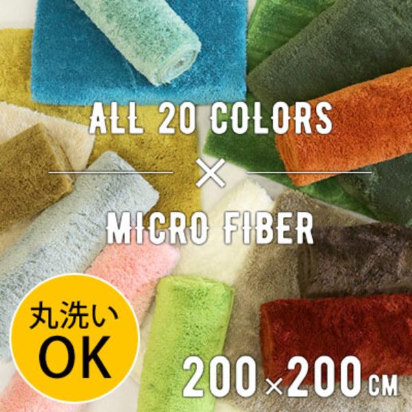 【送料無料】EXマイクロラグ MS300 200×200cm