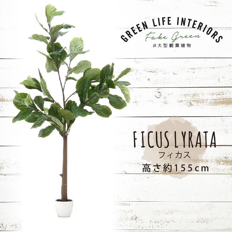 【送料無料_d】人工観葉植物 大型 フェイクグリーン インテリア 造花 フィカス 155cm