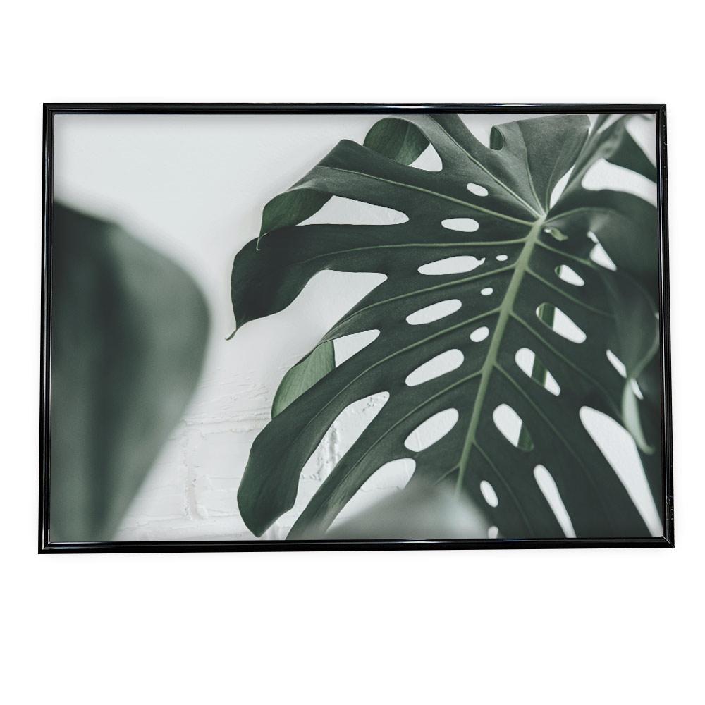 こちらのポスターはA4サイズです ポスター A4サイズ 約21x30cm 選べる用紙 大きさ インテリア オシャレ ファッション フォト ハワイ カフェ モンステラ ボタニカル おしゃれ 葉 シンプル 観葉植物 爆買い送料無料 植物 開店祝い ジャングル ナチュラル