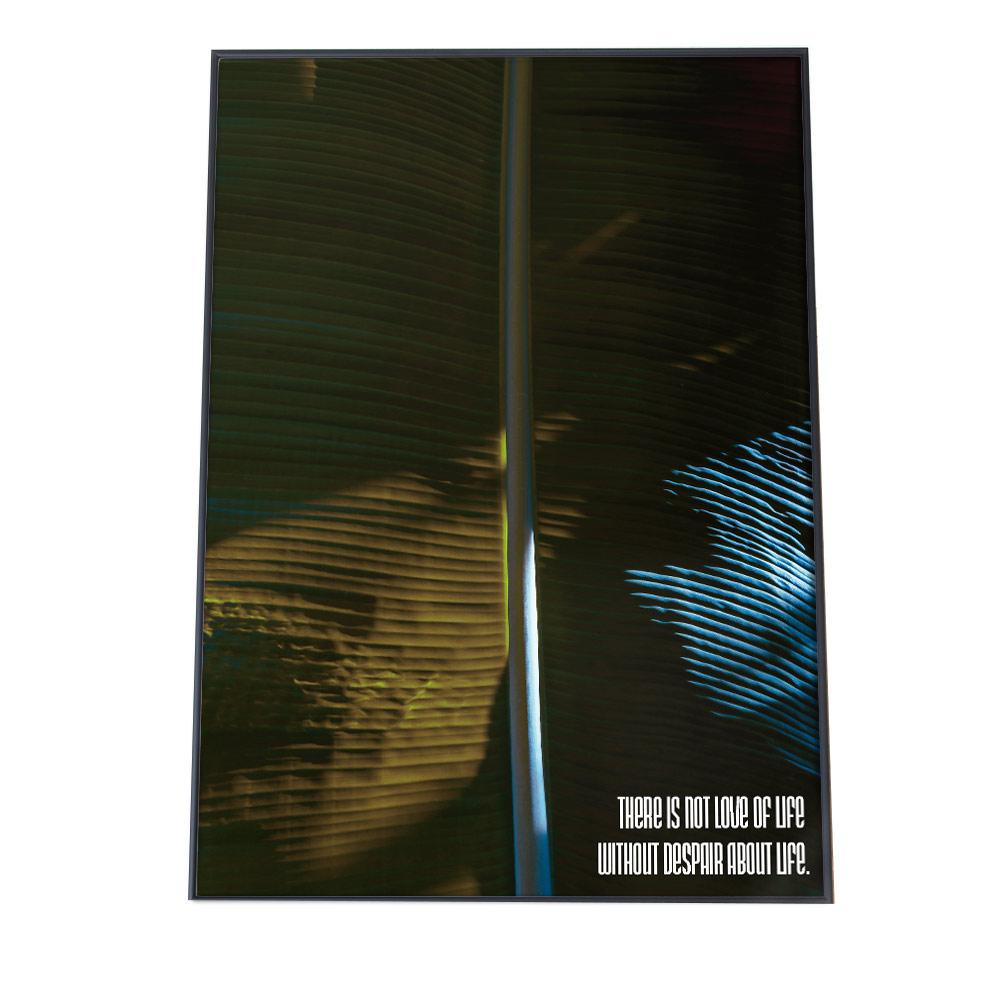 こちらのポスターはA4サイズです ポスター A4サイズ 約21x30cm 選べる用紙 大きさ インテリア オシャレ ファッション フォト モダン 限定品 推奨 シンプル おしゃれ お洒落 しずく 葉 朝露 植物 ナチュラル ボタニカル カフェ 森 グリーン 雨 自然 水 ジャングル 緑 高画質 水滴