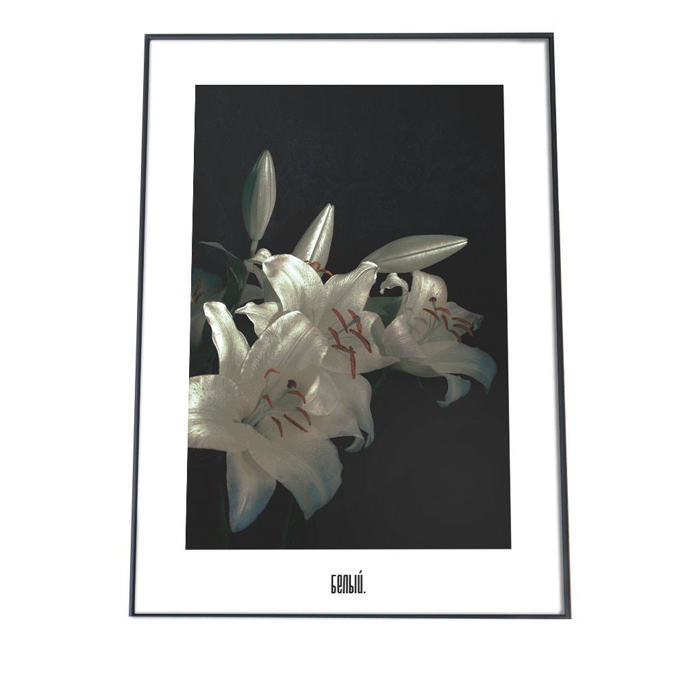 こちらのポスターはA2サイズです [並行輸入品] 送料無料 新品 ポスター A2サイズ 約42x59cm 選べる用紙 大きさ インテリア オシャレ ファッション シンプル おしゃれ 韓国 ナチュラル カフェ 百合 レトロ ヨーロッパ ホワイト ヴィンテージ 花 北欧 白 ボタニカル ユリ