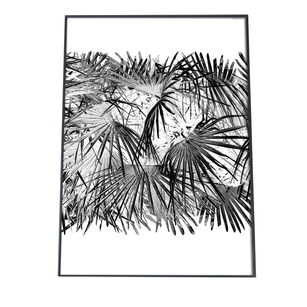 こちらのポスターはB3サイズです ポスター B3サイズ 約36x51cm 選べる用紙 超激安特価 大きさ インテリア おしゃれ ファッション フォト モダン シンプル お洒落 ジャングル 高画質 葉 ボタニカル 緑 ナチュラル 植物 モノトーン グリーン モンステラ 森 自然 カフェ 贈答品