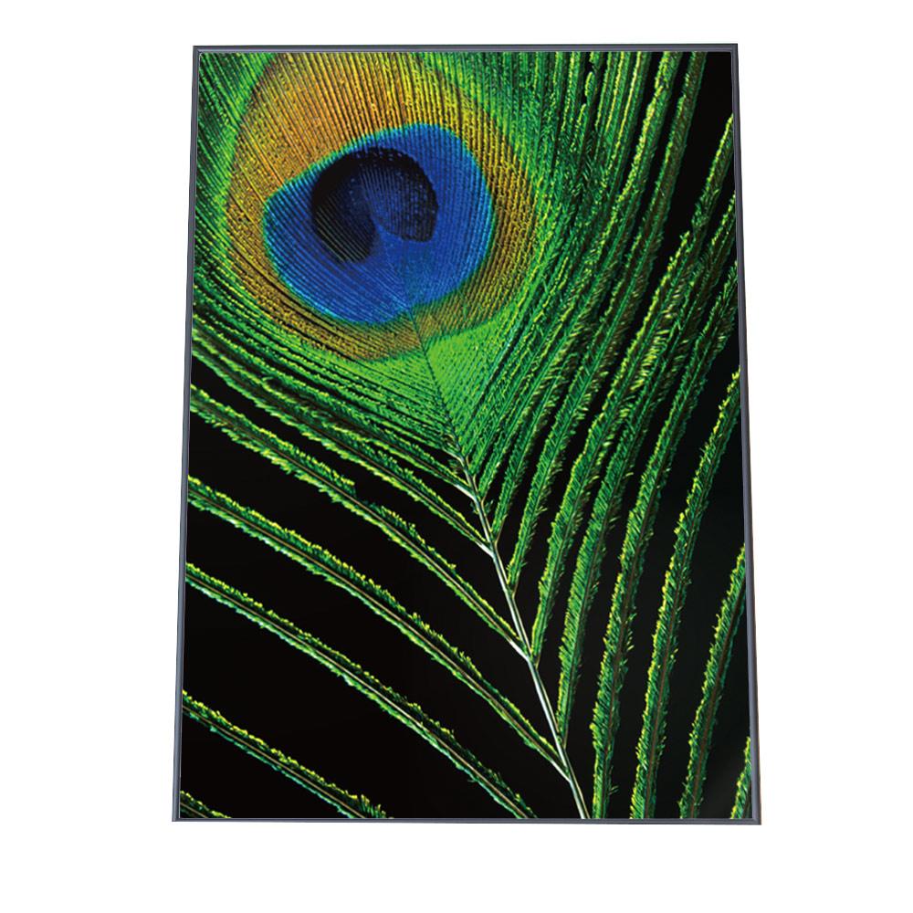 評判 こちらのポスターはA3サイズです ポスター A3サイズ 約30x42cm 選べる用紙 大きさ インテリア オシャレ ファッション フォト おしゃれ アート モダン シンプル 羽根 業界No.1 グリーン カワイイ 羽毛 クジャク 可愛い 綿毛 緑 ジャングル お洒落 孔雀 かわいい フェザー