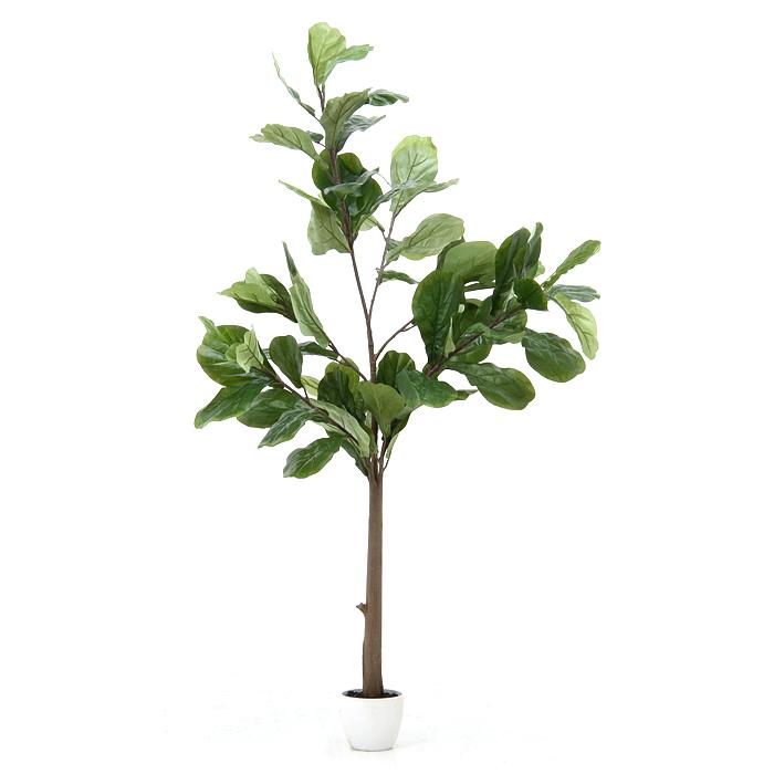 人工観葉植物 大型 フェイクグリーン 正規激安 インテリア 造花 9 1限定 観葉植物 本物 カシワバゴムノキ 全品pt5倍