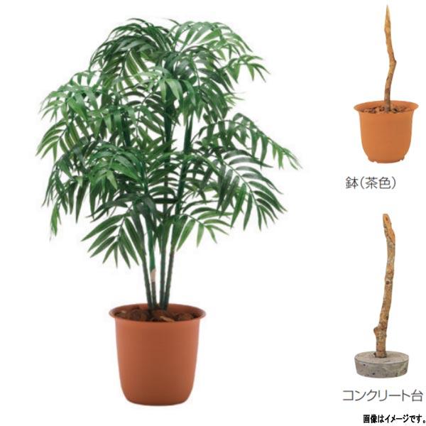 グローベン 人工植物 樹木・屋内用 パーラーパーム A70NC481 H1100mm