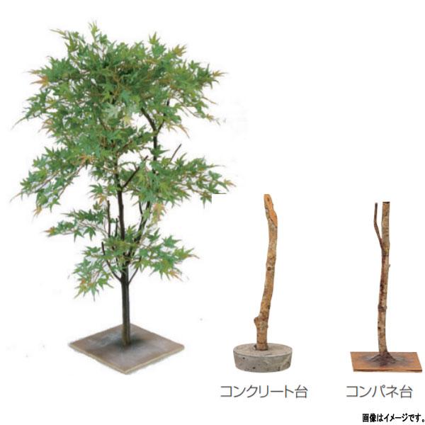 グローベン 人工植物 樹木・屋内用 モミジ A70NC611 H1100mm