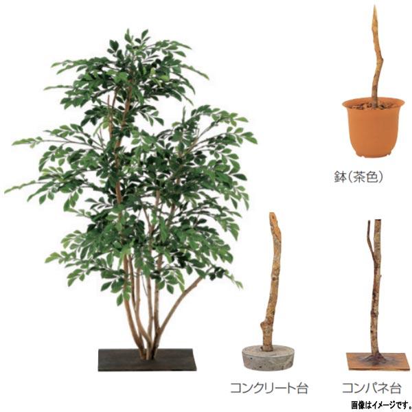 グローベン 人工植物 樹木・屋内用 トネリコ 小 A70ND341 H1000mm