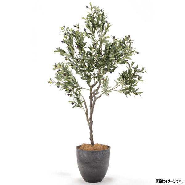 人工観葉植物 ラスティング プランツ オリーブ鉢付き GE3-LP-OLP