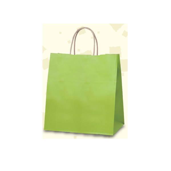 手提げ袋 ショッピングバッグ グリーンR HW-5 345071 230×150×255mm 400枚