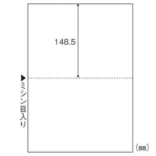 ヒサゴ エコノミーマルチプリンタ帳票2面 BPE2002 1箱