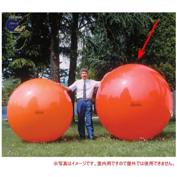 ダンノ メガボール180 180cm レッド D-5456