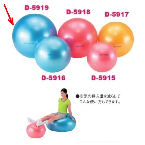 ダンノ ギムニクボディボール95 Φ95cm ブルー D-5919