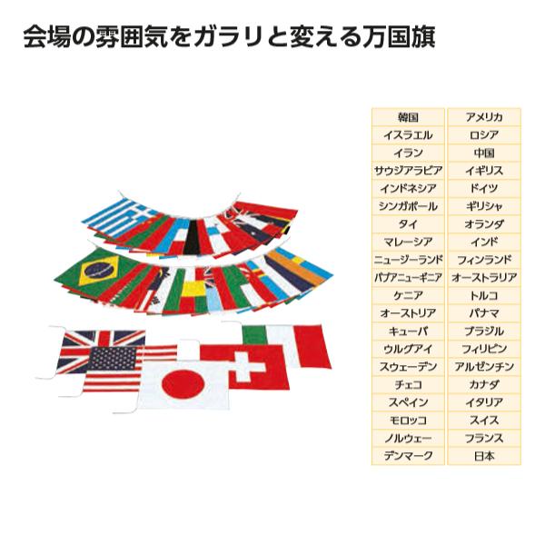 エバニュー 万国旗 40 EKA382 1組