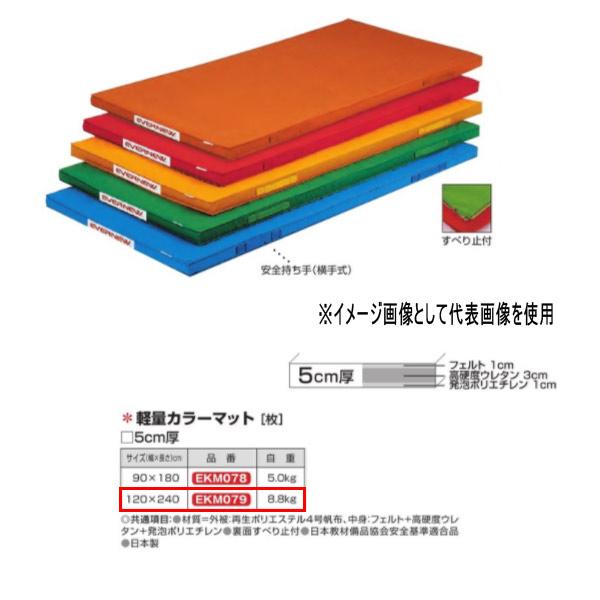 エバニュー 軽量カラーマット EKM079 幅120×長240×厚5cm