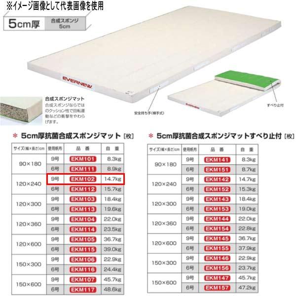 エバニュー 5cm厚抗菌合成スポンジマット EKM102 幅120×長240cm 9号帆布