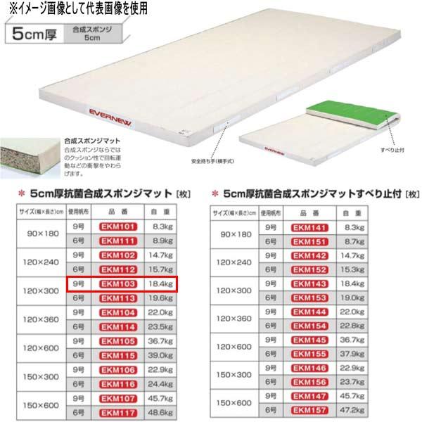 エバニュー 5cm厚抗菌合成スポンジマット EKM103 幅120×長300cm 9号帆布
