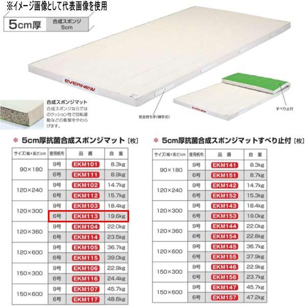 エバニュー 5cm厚抗菌合成スポンジマット EKM113 幅120×長300cm 6号帆布