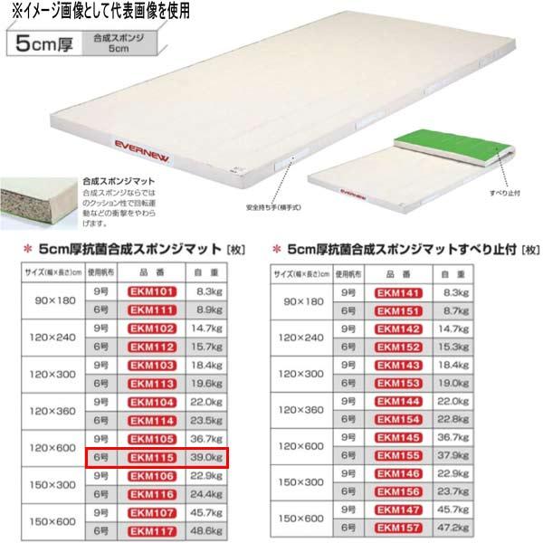エバニュー 5cm厚抗菌合成スポンジマット EKM115 幅120×長600cm 6号帆布