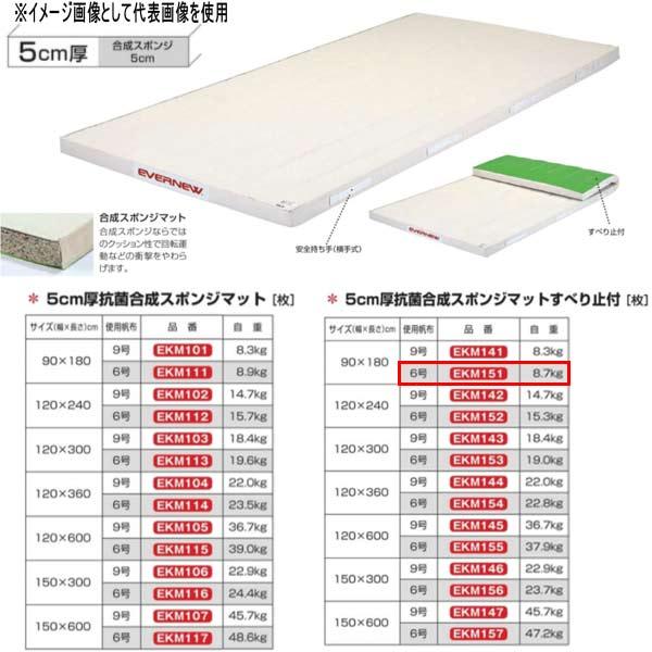 エバニュー 5cm厚抗菌合成スポンジマットすべり止付 EKM151 幅90×長180cm 6号帆布