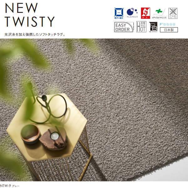 スミノエ ラグ スミトロン ニューツイスティー 短めのシャギー 日本製 ホットカーペット、床暖房対応 200×200cm