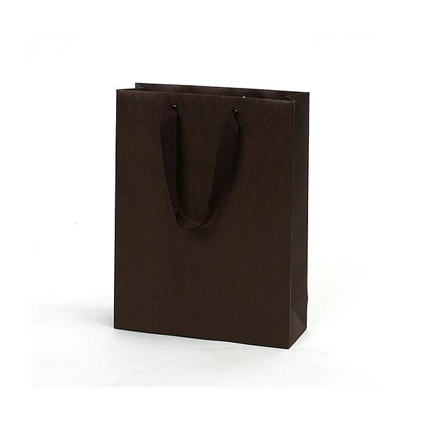 紙袋 無地ブラウン クラフト紙 MBR2229 220×80×290mm 100枚