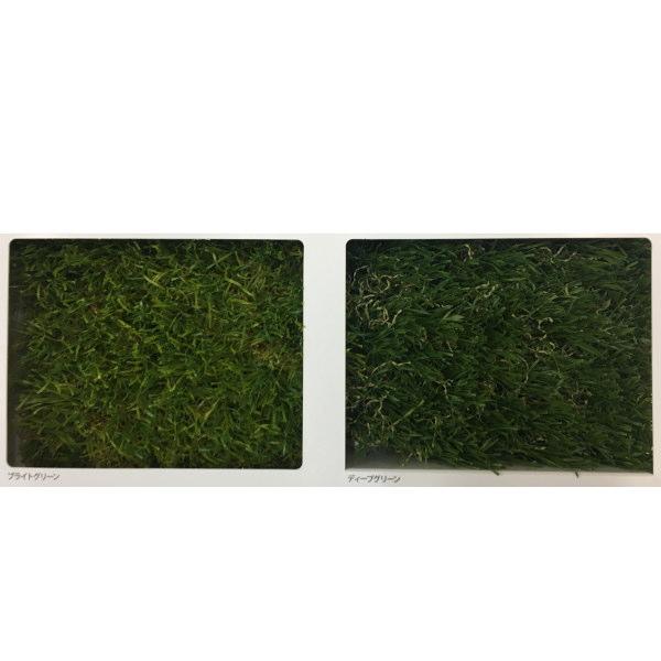 東レアムテックス 人工芝 天然芝の風合い MD-PE カット販売 幅1.8m 標準パイル長35mm 1m長