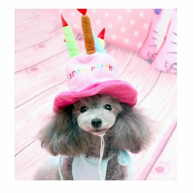 Dog Birthday Happy Cap Headpiece Cat Hat Party Costume Play Small Size Cake