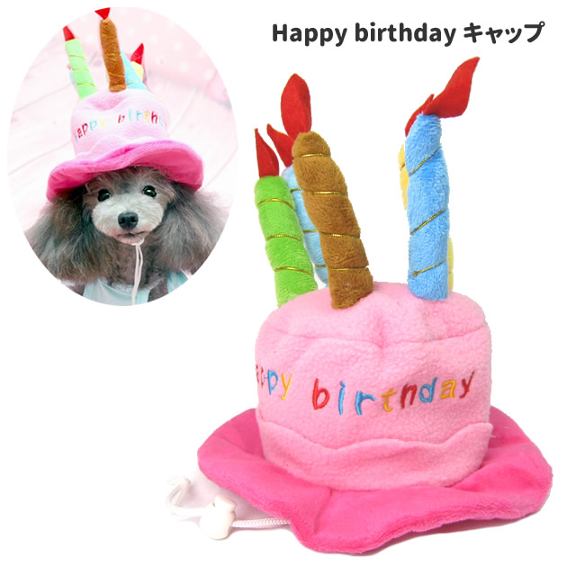 Inuya Dog Birthday Happy Cap Headpiece Cat Hat Party Costume Play Small Size Cake