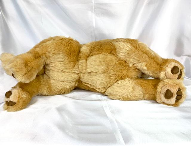 あす楽 対応 ゴールデンレトリバー ぬいぐるみ 犬(Mサイズ) (人形の吉徳)