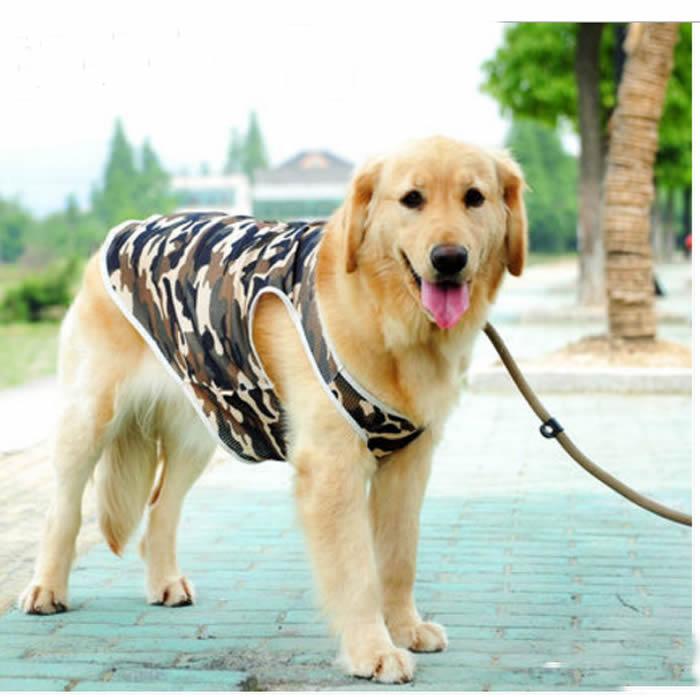 犬 服 筆文字 メッシュ タンクトップ 迷彩 名前入れ商品 犬 服 サマー 大型犬 夏