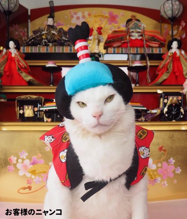 犬 カツラ お殿様 お姫様 LL(帽子 キャップ パーティー かぶりもの コスプレ 小型犬~中型犬) ハロウィン グッズ