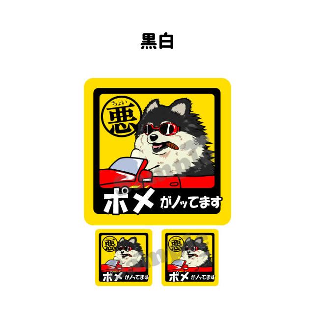 Inuya Pomeranian Dog Sticker Little Evil Square Sets Dog In Car