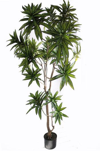 送料無料 フェイクグリーン(人工植物) ドラセナ・ソングオブ・ジャマイカ175cm  フェイクグリーン   おしゃれ 人気 引越し祝い 開店祝い 新築祝い 結婚祝い お祝い フェイクグリーン通販 イミテーショングリーン