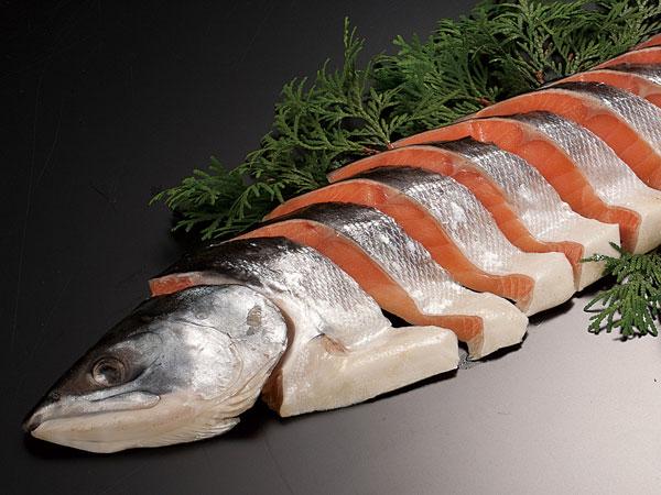 時鮭姿切身 1尾(約1.6kg)送料無料 北海道産 トキシラズ