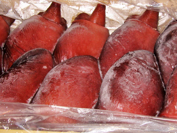煮たこ頭 5kg(3~6個) ボイル冷凍送料無料 業務用 北海道産ミズダコ