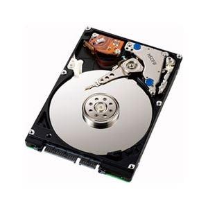 アイ・オー・データ機器 Serial ATA II対応 2.5インチ内蔵型ハードディスク 250GB HDN-S250A5 送料込!