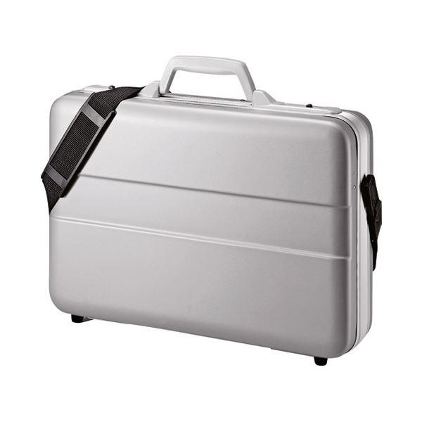 サンワサプライ ABSハードPCケース BAG-ABS5N2 送料無料!