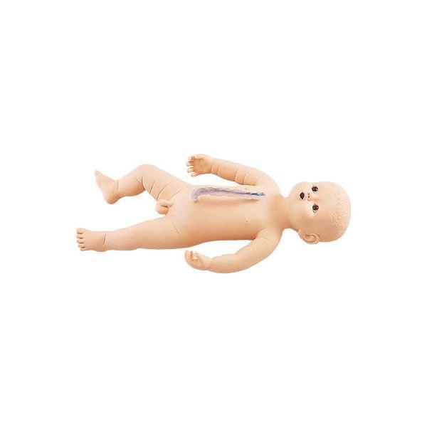 サカモトベビー/看護実習モデル人形 【男】 全身シームレス構造 臍帯付き M-107-3【代引不可】 送料無料!