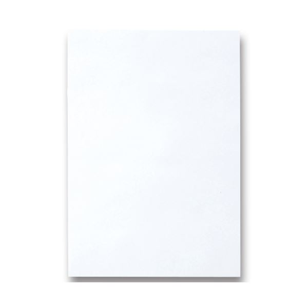 (まとめ) TANOSEE 色画用紙 四つ切 ゆき 1パック(10枚) 【×30セット】 送料無料!