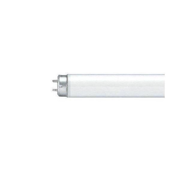 (まとめ)Panasonic 蛍光灯 10W直管 FL10WF 白色 1本【×50セット】 送料込!
