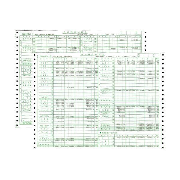 東京ビジネス 合計残高試算表 (一般・科目印刷) CG100600 1冊(50セット) 【×10セット】 送料無料!